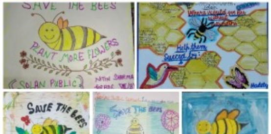 World Bee Day Students Activity